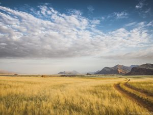 NAMIBIE, kaokoland – édition 2016